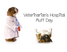 Veterinarians Hospital: Ruff Day